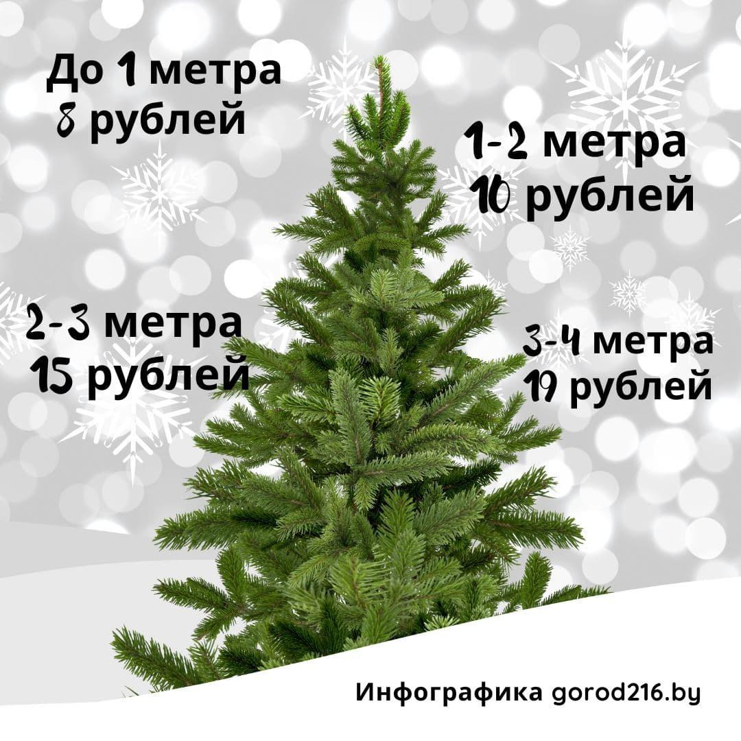 photo_2020-12-12_20-08-00