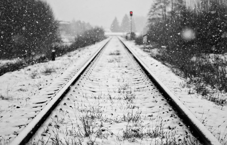 relsy-sneg-zima