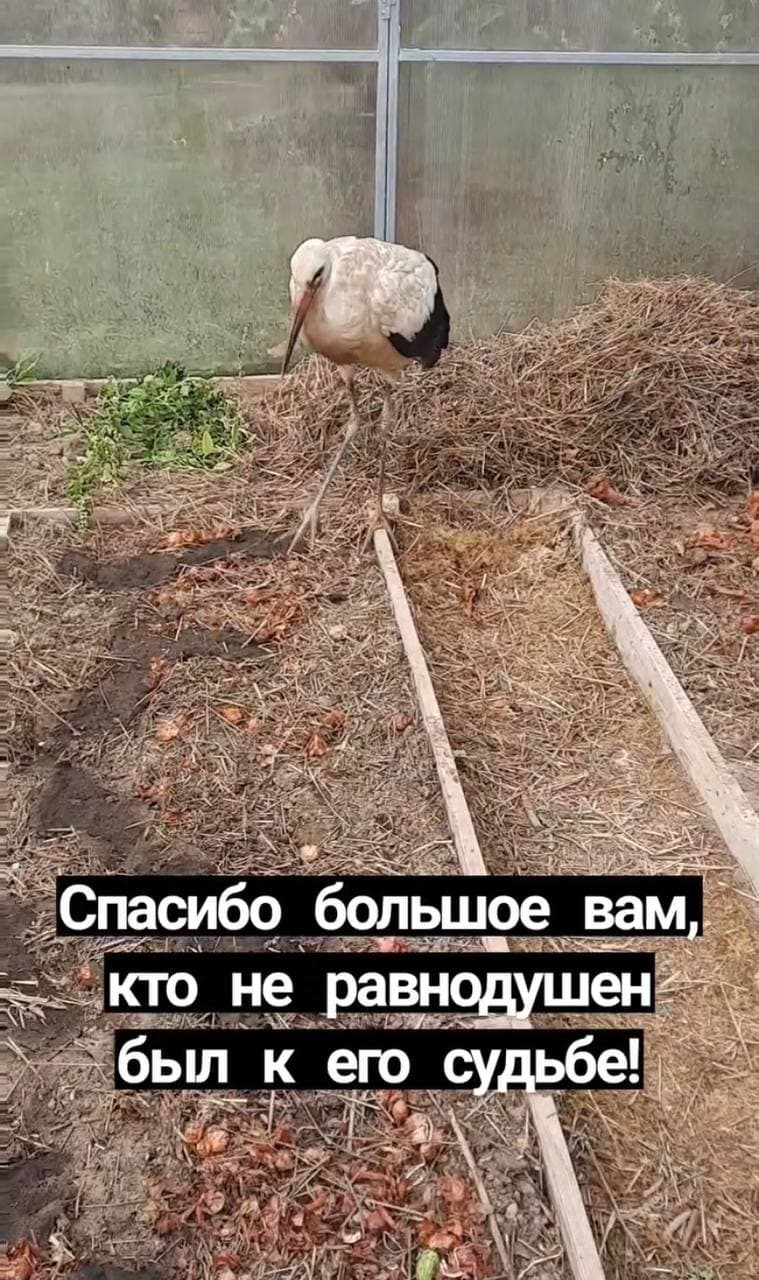 photo_2021-10-12_21-31-05_1