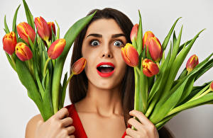 Tulips_Brown_haired_Surprise_emotion_Face_544463_300x195